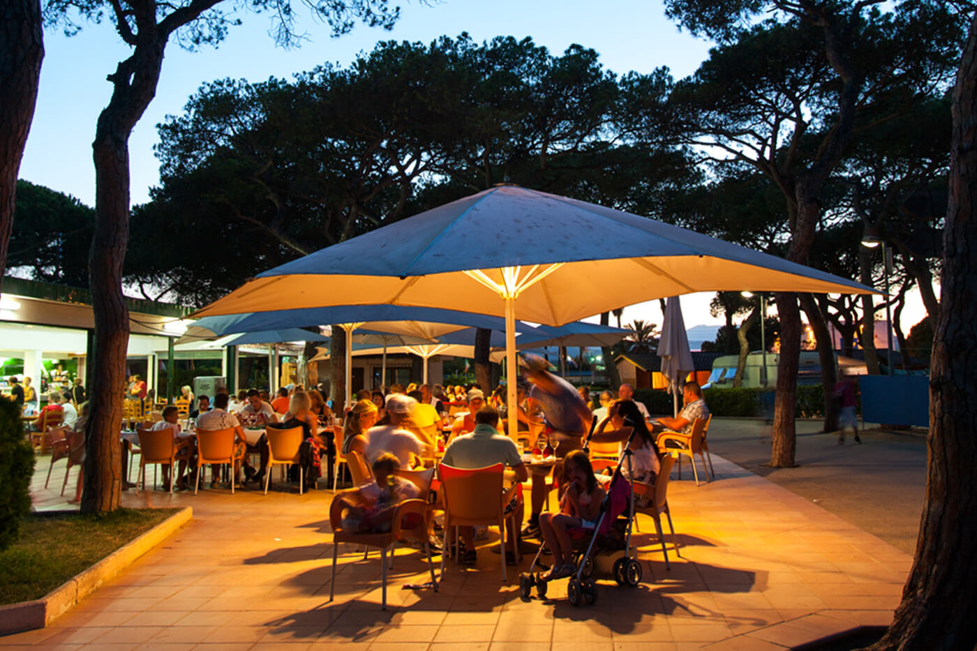 Camping El Pinar the best services in the Costa Brava. Beachfront campsite for the whole family